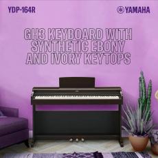 le YDP-164 vous propose un design de piano acoustique traditionnel, tout en offrant les avantages d'un piano numérique à la pointe de la technologie ! 😍🖤🤍🎶 #ydp164 #yamaha_digital_piano🎹  #pianolovers #sonomusic_tunisia